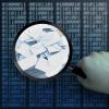 【Exchange Online】 メールサーバを管理するなんて簡単!?
